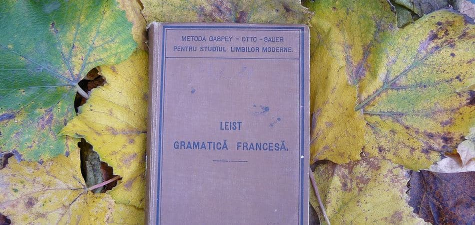 learn english grammar noun